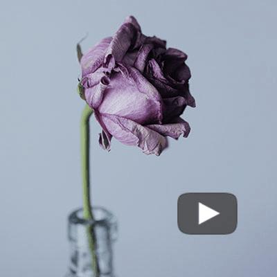 Qué es el amor – Alberto Fernández